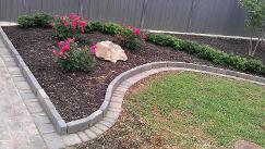 brick on edge landscape bed rose bushes